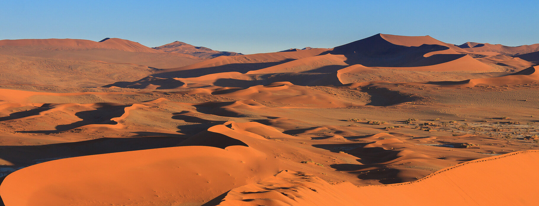 8 DAYS WINGS OVER NAMIBIA