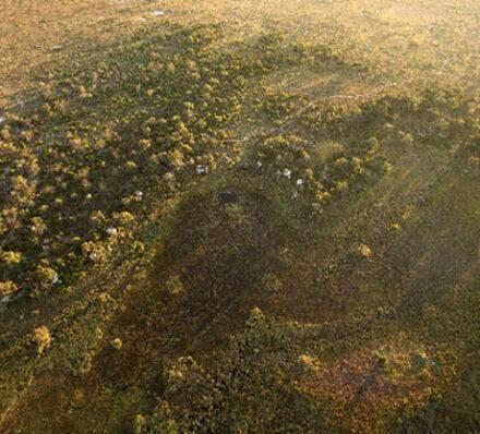 Okavango Delta / Departure from Maun