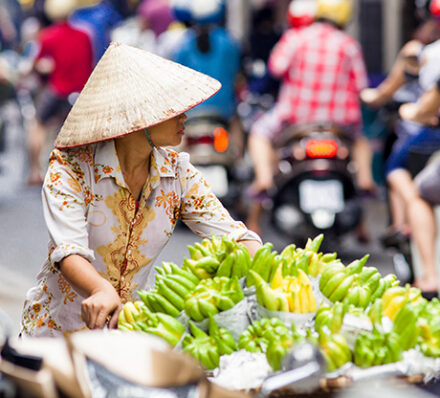Hanoi / Ninh Binh