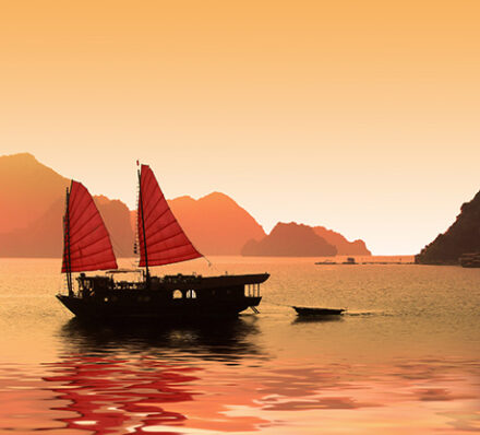 Ninh Binh / Lan Ha Bay