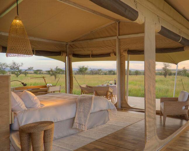 Serengeti (either one area)
