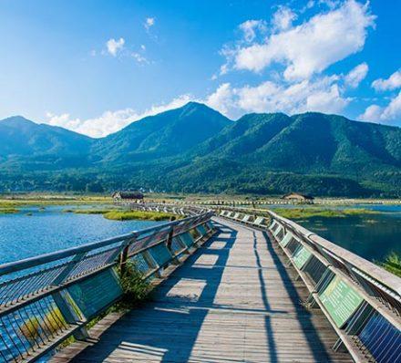 Gaoligong / Tengchong (Average altitude 2300-1667m)