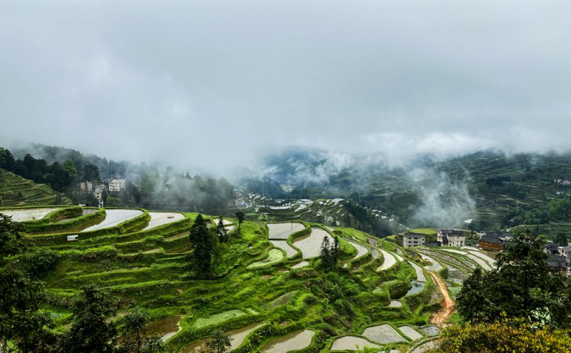 A sip of Guizhou: Maotai, Miaos, and the Ethnic Minorities of China