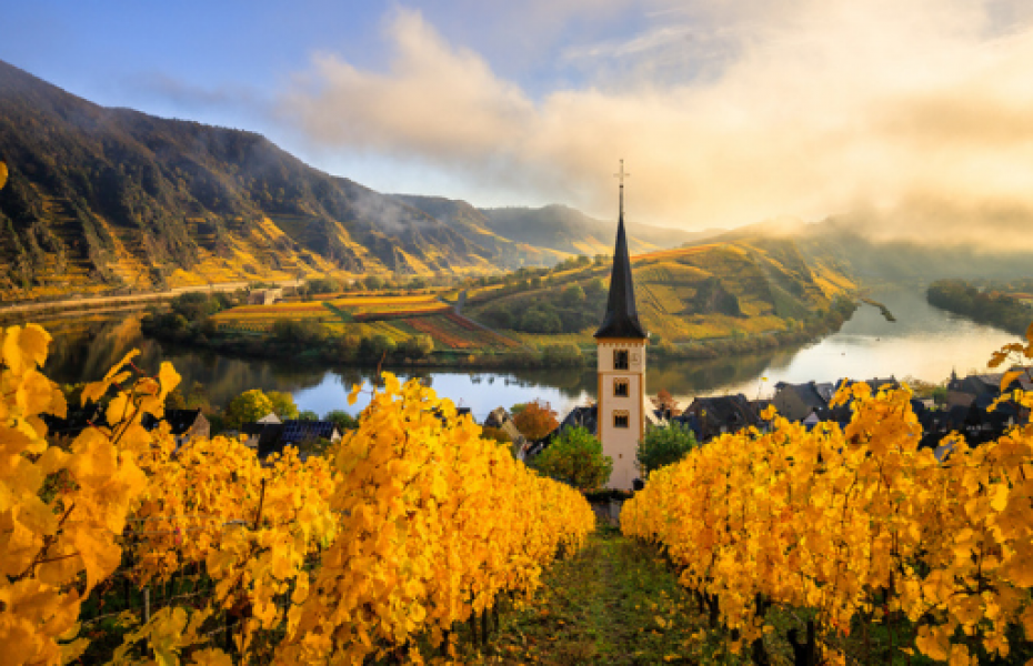 Guide to Germany 2021 : Magic cities & delightful themed routes